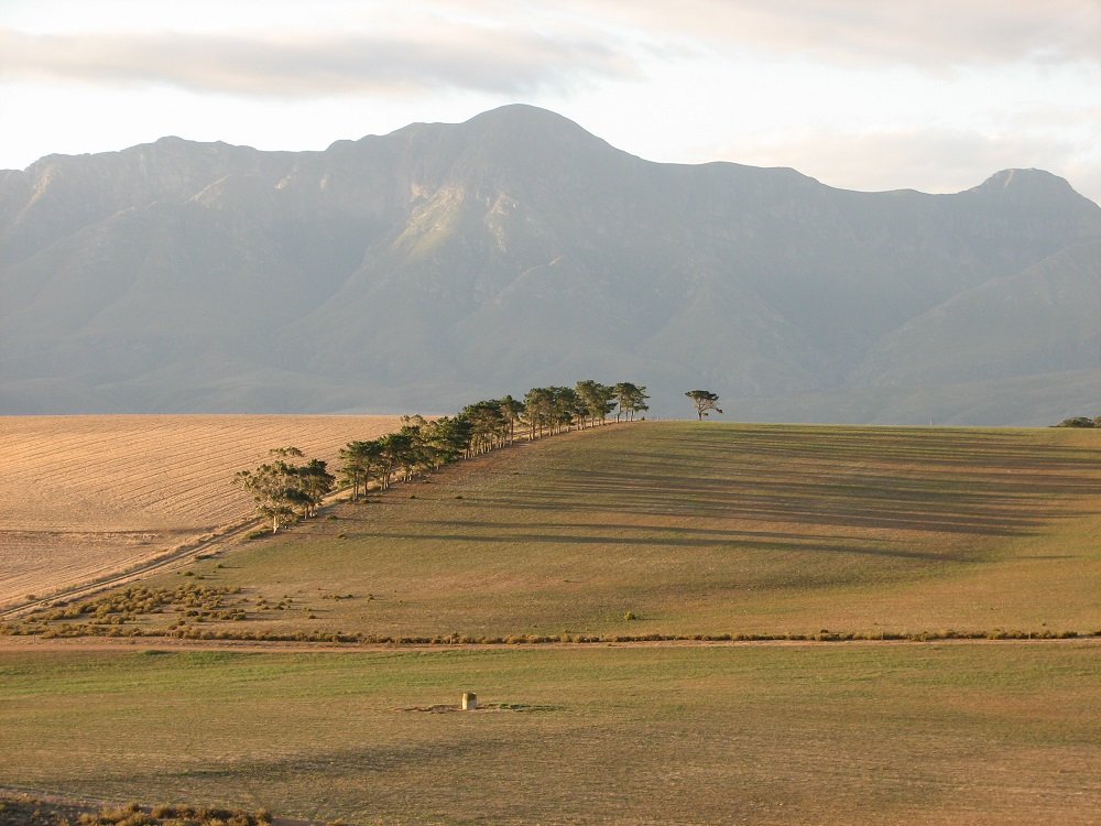 Langeberg Mountains