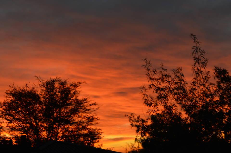 Kalahari Sunrise