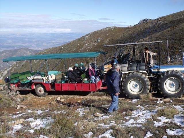 Montagu Tractor Ride