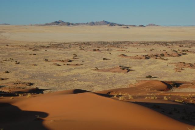 Southern Namibian dunes