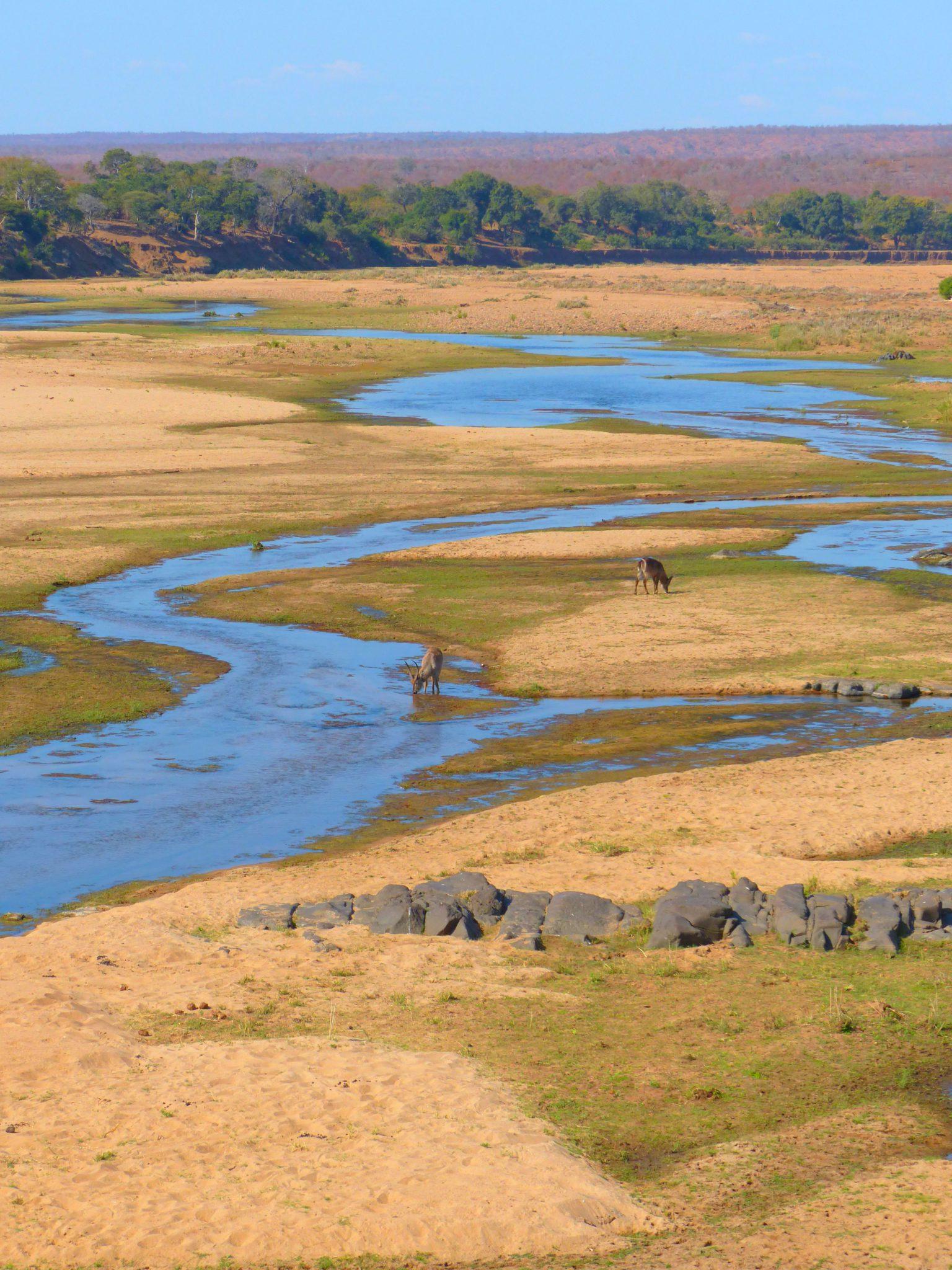 Sabie River - Kruger